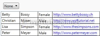 WPF Tutorial | DataGrid